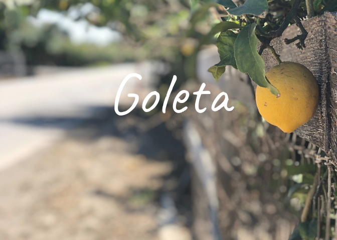 Learn more about the history of the Goleta neighborhood in Santa Barbara County, homes for sale, recent sales, market updates, and off market listings.